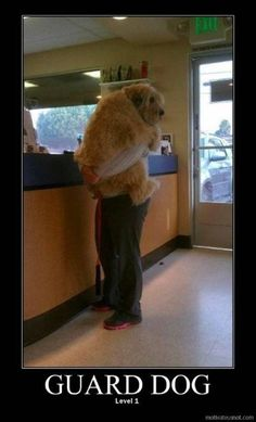 hilarious because i hold our family dog like this too!