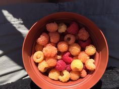 Gorgeous Organic, RAW, tri-coloured Raspberries Freshly Picked and quickly eaten!