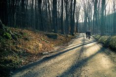 Off Road Riding #cycling #cyclocross