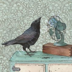 """LOL!!!!  L.O.V.E. This!!! """"Crow Cools Off"""" by Cori Lee Marvin"""