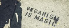 Here's What Meat-Eaters Really Think of Veganism, According to a New Study Meatball Marinara, Animal Slaughter, University Of Bath, Social Stigma, Meat Substitutes, Food System, Perfect Plants