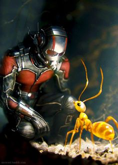 Marvel/Disney ''Ant-Man'' A Relative Released: Marvel Avengers, Marvel Comics, Marvel Heroes, Marvel Characters, Nightwing, Batwoman, Disney Marvel, Marvel Universe, Ant Man Scott Lang