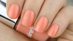 Swatch: Claire's - Music Festival (29554) - Pinky Polish
