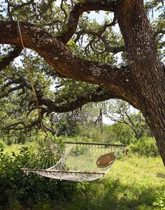 A hammock suspended from branches of a gnarly live oak is just the spot to stretch out on a lazy afternoon. #countryliving