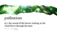 """psithurism"" - the sound of the leaves rustling as the wind blows through the trees"