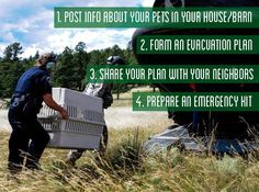 4 disaster preparedness tips to help keep you, your family and your pets safe.