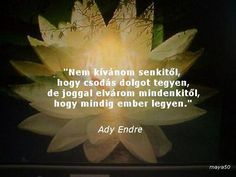 Ady Endre Motto, Motivational Quotes, Life Quotes, Poetry, Wisdom, Thoughts, Words, Buddha, Vans
