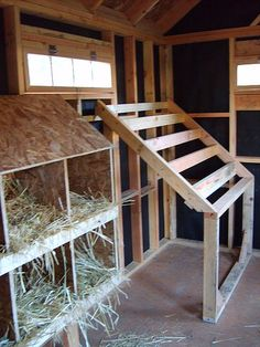 Laying boxes and sleeping latter. The staggered latter prevents hens from…
