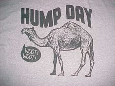 Delta Pro Weight Camel Hump Day Woot Woot Gray Unisex Adult T-Shirt 3XL #Delta #GraphicTee