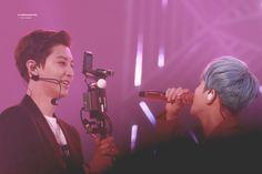 Baekyeol, Chanbaek, Park Chanyeol, Baekhyun, Exo Couple, Exo Concert, Love At First Sight, So Much Love, Twitter