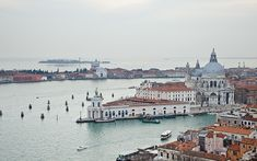 Kingsbridge Travel Luxury Agency in Tampa helps you create your dream vacation: Luxury Cruises, European River Cruises & Personalized Travel Services. Luxury Cruise Lines, European River Cruises, Cruise Reviews, Travel Expert, Vacation Packages, Travel Agency, Venice Italy, Luxury Travel, Dream Vacations