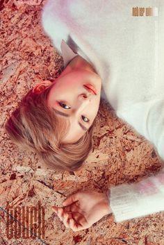 NCT WinWin New Wallpaper Collection. Nct 127, Nct Winwin, Nct Yuta, Taeyong, K Pop, Bts Cute, Pre Debut, Jisung Nct, Na Jaemin