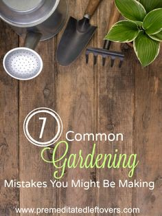 7 Common Gardening Mistakes You Might Be Making