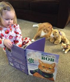 So many cute kittens videos compilation 2019 Animals For Kids, Cute Baby Animals, Animals And Pets, Funny Animals, Animals Images, Kids And Pets, Cute Kittens, Cats And Kittens, Crazy Cat Lady