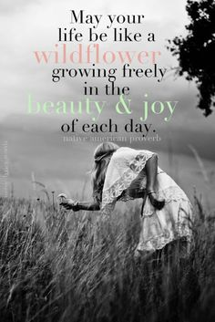 Quotes:  May your life be like a wildflower, growing freely in the beauty & joy of each day.""