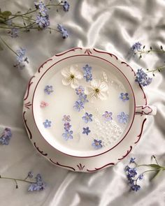 Lavender Aesthetic, Aesthetic Colors, Flower Aesthetic, White Aesthetic, Aesthetic Vintage, Aesthetic Photo, Aesthetic Food, Aesthetic Pictures, Aesthetic Backgrounds