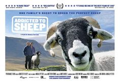 In U.K. Cinemas, a new indie feature length documentary, Addicted to Sheep, is an intimate portrait of a year in the life of a hill farming family that spend their days looking after their flock of prized sheep.  Capturing both the stark, stunning beauty of the landscape, and how brutally hard it is just to survive, Addicted to Sheep allows us to experience life on a hill farm.