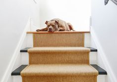 How to install a stair runner via Yellow Brick Home // DIY, stair runner, sisal stair runner, black and white stairs, how to install a carpet runner