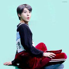 Living In Korea, Fandom Kpop, Nct Doyoung, Having A Bad Day, Cute Korean, Bruce Lee, Photos Du, Belle Photo, Taeyong
