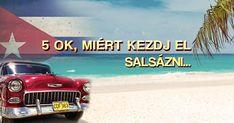 Budapest, Salsa, Tropical, School, Movie Posters, Movies, Films, Film Poster, Cinema