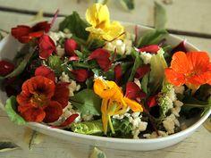 Uma entrada de Salada de Rúcula com Patê de Queijo é a companhia ideal para qualquer prato. Chef: Luiza Hoffmann