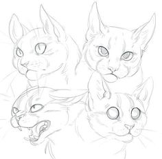 Deviantart cat doodle, how to draw cats, cat drawing tutorial, drawing tu. Animal Sketches, Animal Drawings, Art Drawings, Drawing Animals, Pencil Drawings, Cat Reference, Drawing Reference, Design Reference, Cat Sketch