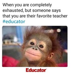I don't think I'm quite ready for the long weekend to be over😂 Teaching Memes, Teaching Resources, Teacher Favorite Things, Best Teacher, Teacher Stuff, Teacher Humour, Funny Teacher Memes, Funny Memes, Teacher Problems