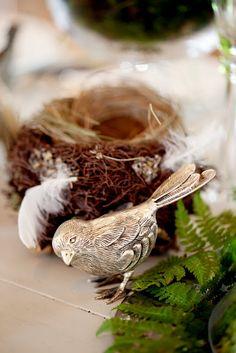 I love birds!!!