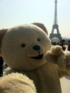 A Snuggle Bear in Paris.