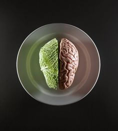 Food / Food Evolution by Aaron Tilley