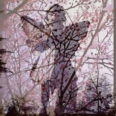Photo by Anita Russell In Memorium, Project Site, Angel Statues, Photo A Day, World, Pictures, Photography, Outdoor, Photos