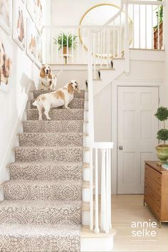 Dream Home Design, My Dream Home, House Design, Up House, House Stairs, Staircase Runner, Stair Runners, Apartment Decoration, Dash And Albert