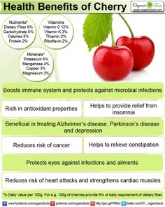 Organic Facts - Fruits - CHERRY