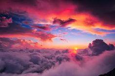 Risultati immagini per girasoli tramonto
