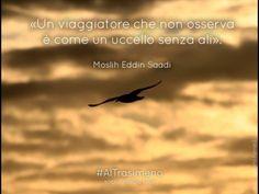 """""""Un viaggiatore che non osserva è come un uccello senza ali."""" Moslih Eddin Saadi #AlTrasimeno"""