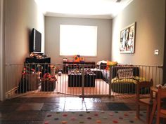 Large Sectional Gate for Playroom
