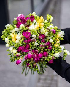 Primavara inseamna culoare si parfum, iar freziile sunt nelipsite in aceasta perioada.  #freesia #colorful #spring #perfume #scentedflowers #buchet #livrareflori Magnolia, Iris, Floral Wreath, Wreaths, Plants, Decor, Fragrance, Floral Crown, Decoration