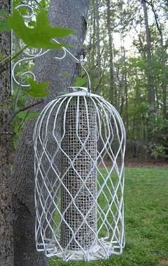 How to Squirrel Proof Bird Feeders that Work!