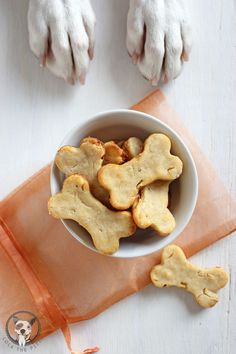 Ginger Apple Dog Treat Recipe - lolathepitty.com