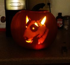 English bull terrier pumpkin carving