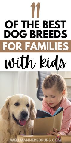 If you are considering a new dog but aren't sure which breed to pick, here are 11 of the best kid-friendly dog breeds. Plus the pros and cons of each to help you make the right decision for your family. #newdog #newdogowner #newpuppy Child Friendly Dogs, Friendly Dog Breeds, Best Dog Breeds, Best Dogs, Dog Language, Getting A Puppy, Bichon Frise, King Charles Spaniel, Mixed Breed