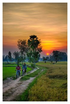 Men riding their bicycles going home from work, Chau Doc, Vietnam. Beautiful Nature Pictures, Beautiful Nature Scenes, Beautiful Nature Wallpaper, Beautiful Landscapes, Beautiful Dark Art, Landscape Photos, Landscape Paintings, Landscape Photography, Nature Photography
