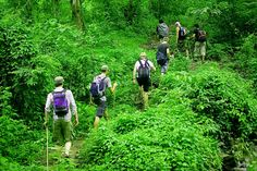 Krishna Holidays promises you best trekking experience. Enjoy trekking with our expert Guides and explore the mountains of Rishikesh, Garhwal Himalayas, Uttarakhand. Rishikesh, situated at the foothills of Himalayas is an ideal place for trekking in India.