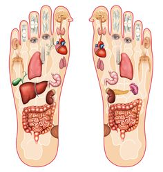 Here's Why You Should Massage Your Feet Every Night Before Going To Bed!   Healthy Food Headlines