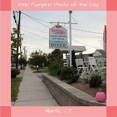 #PinkPumpkin #PhotoOfTheDay #SmithsAcresPumpkins #GumdropsAndLollipops#Niantic 1950s Diner, Pumpkin Photos, Ice Cream Candy, Pink Pumpkins, Sidewalk, Garden, Shopping, Garten, 50s Diner