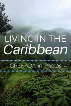 The 15 Best Things to Do In Grenada – the Spice Island of the Caribbean! Caribbean Culture, Royal Caribbean, Caribbean Food, Jamaica, Puerto Rico, Cuba, Grenada Island, Bahamas Honeymoon, Caribbean Vacations