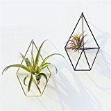 Sundlight 2 Pack Hanging Planter Vase & Geometric Wall Decor Container - Great For Succulent Plants, Air Plant, Mini Cactus, Faux Plants and More, White Ceramic/Brass FREE UK delivery