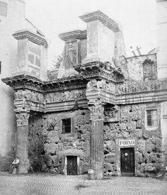 Le Colonnacce antico Foro di Nerva
