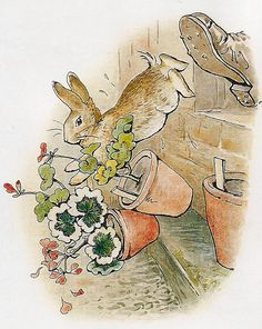 """Run, Peter, Run! Peter has a narrow escape from Farmer McGregor. By brilliant British illustrator Beatrix Potter."