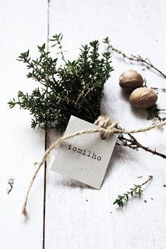 Pratos e Travessas: Risotto de cogumelos e tomilho * Cremini mushrooms and thyme risotto | Recipes, photography and stories